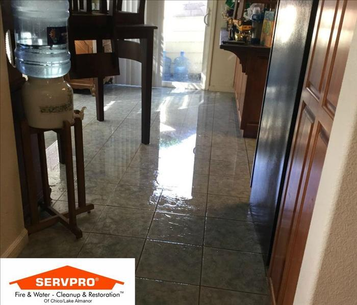 Water Damage SERVPRO Continuing Education: Restorative Drying For Water Damage