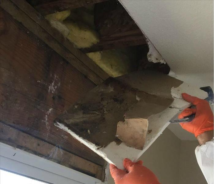 Mold Remediation Do You Have Mold Lurking Behind Your Walls?
