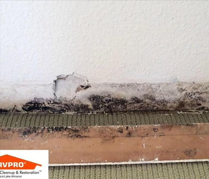 Mold Remediation Why is There Mold in My Bathroom?