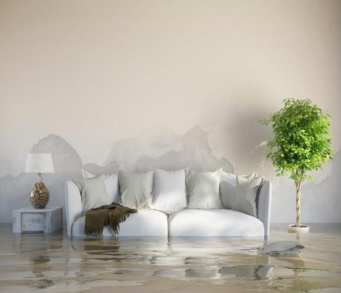 couch submerged in water next to lamp and plant