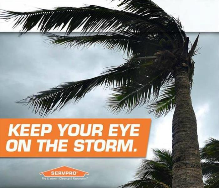 Storm Damage Wind Storm Damage Prevention Tips… Easy as 1. 2. 3.