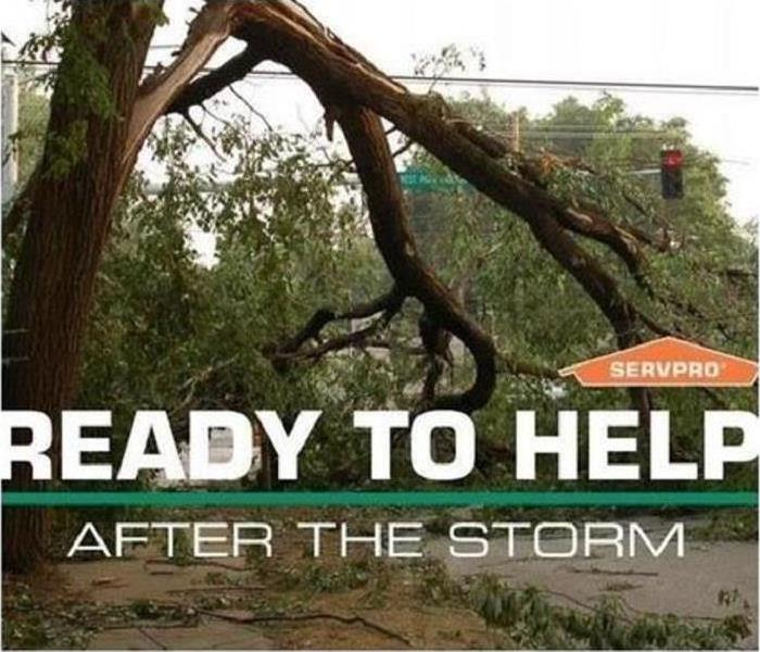 Broken tree branches over street with SERVPRO house logo and bold text