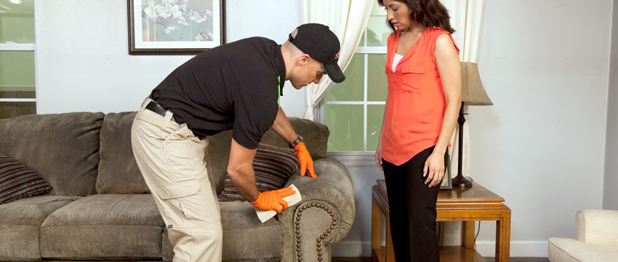 Chico, CA carpet upholstery cleaning