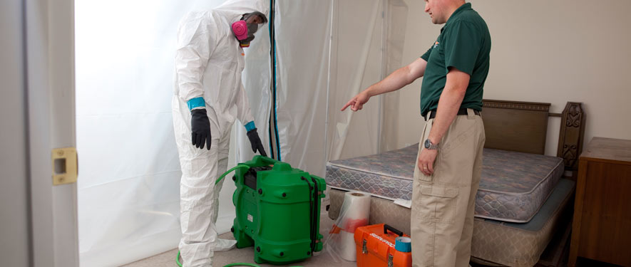 Chico, CA mold removal process